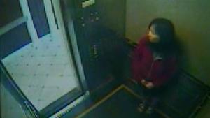 elisa lam elevator